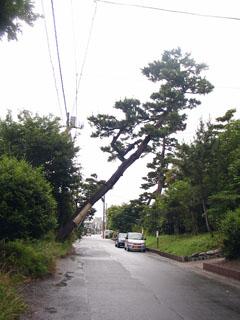 大磯宿江戸方見附跡付近