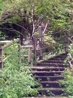 階段を行けば樫の木平。左は元箱根。