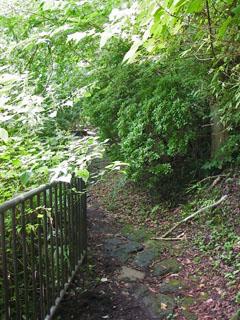 元箱根への道