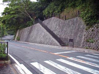 猿滑坂の途中で県道を渡る。