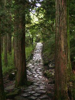 箱根旧街道資料館を過ぎた辺りの石畳