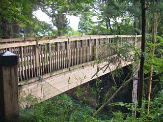 杉並木歩道橋