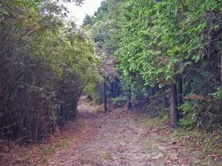 念仏石付近の道