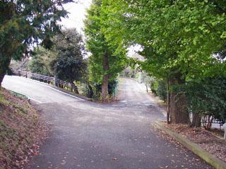 旧東海道は右。この先は坂小学校の裏。