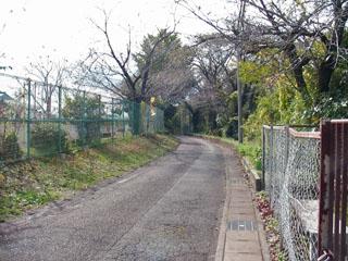 法善寺旧跡碑前の道