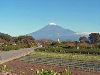 中往還の終点から見た富士山